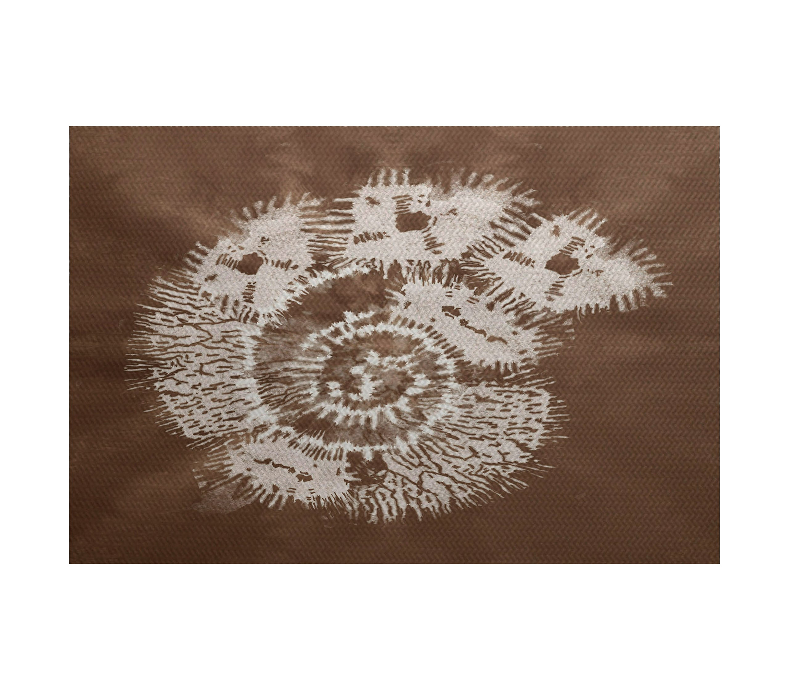 E by design Conch Animal Print Indoor/Outdoor Rug, 5'' x 7' , Brown