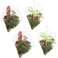 Juvale Hanging Glass Terrarium - Terrarium Holder Succulent Plants, Tealight Candles, Colored Sand, Indoor Outdoor House Decor