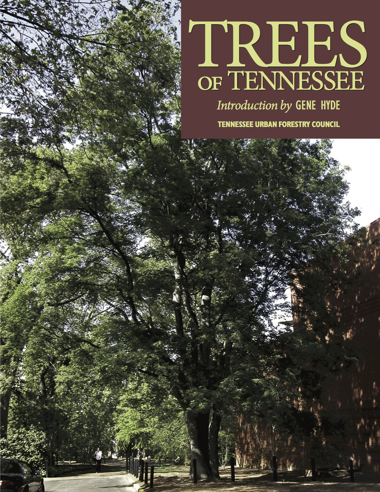 Trees of Tennessee ebook