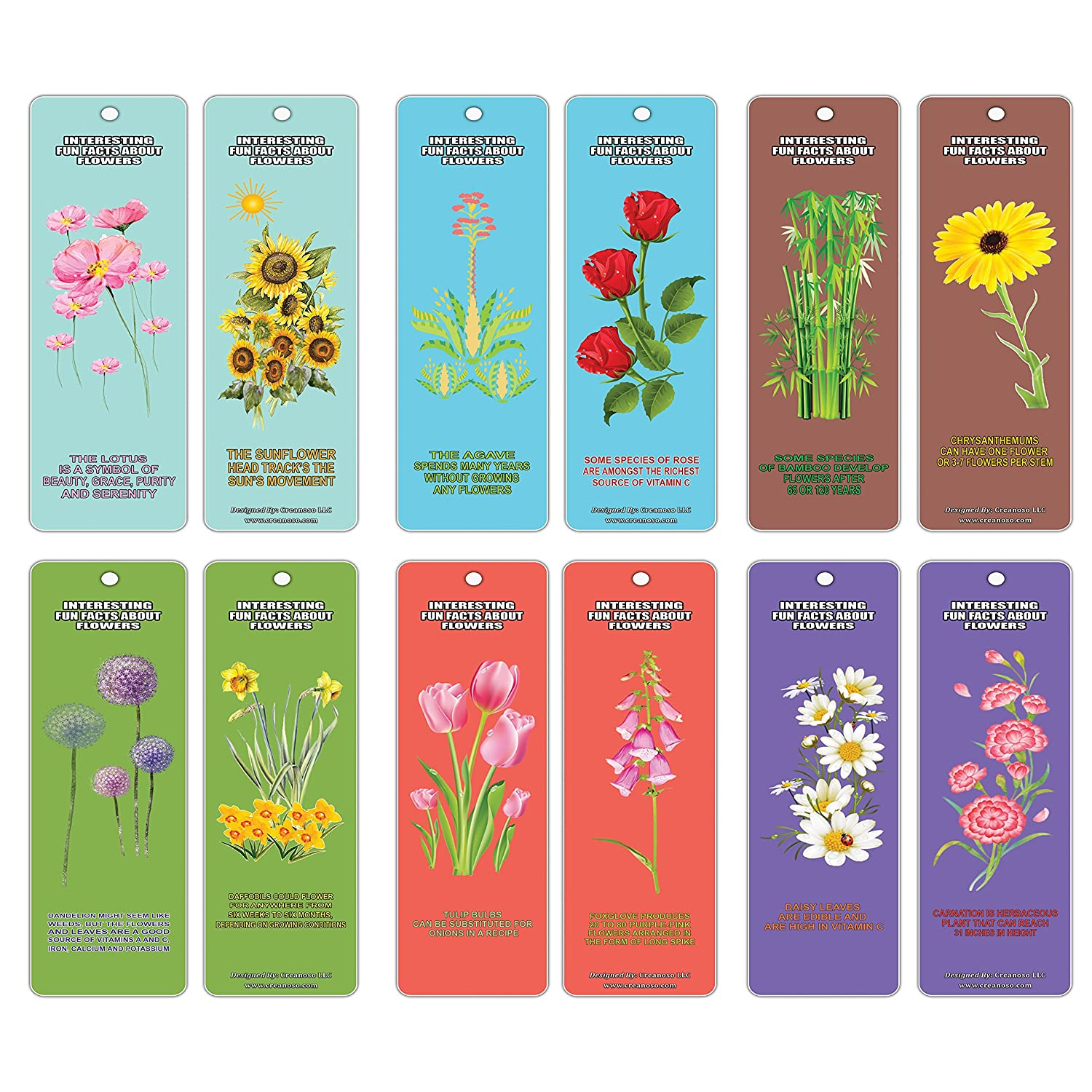 Amazon creanoso flowers fun facts bookmarks 12 pack amazon creanoso flowers fun facts bookmarks 12 pack reading motivation bookmarker cards fun flowers reading time set for boys girls teens izmirmasajfo
