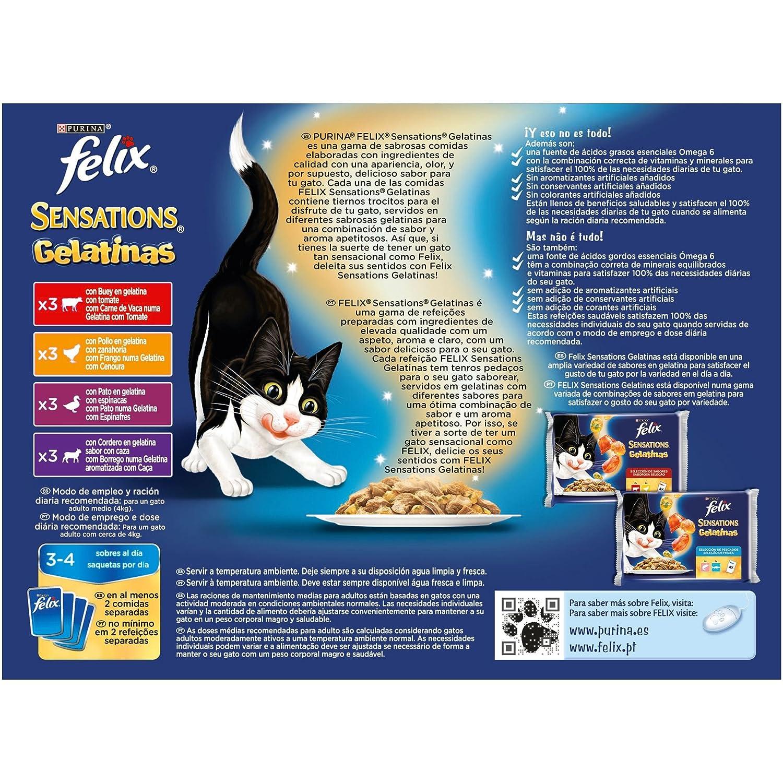 Purina Felix Sensations Gelatinas comida para gatos Selección Surtido de Carnes 6 x [12 x 100 g]: Amazon.es: Productos para mascotas