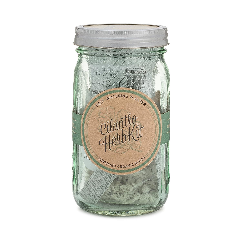 Amazon.com: Herb Garden Jar, kit moderno del surtidor auto ...