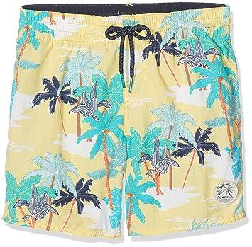 ad6da7fb2 O Neill Thirst To Surf - Pantalón Corto de Playa para niño