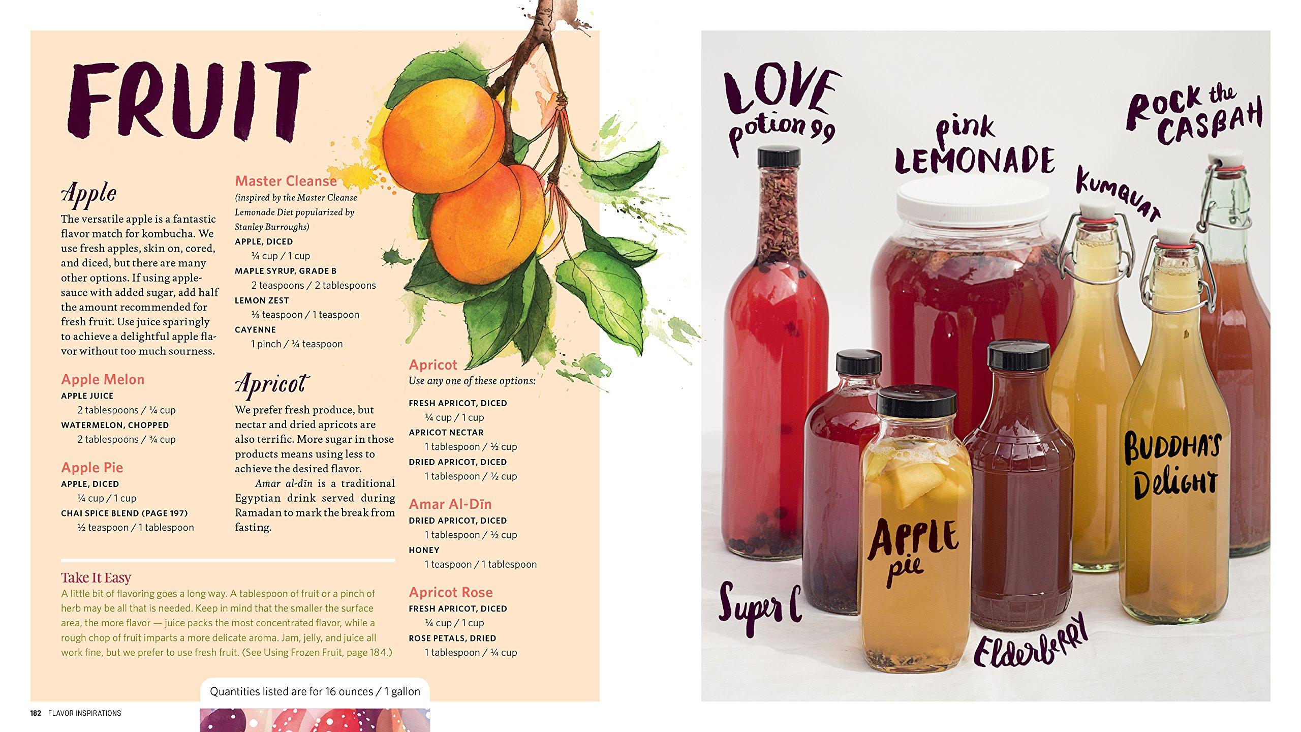 The Big Book Of Kombucha: Brewing, Flavoring, And Enjoying The Health  Benefits Of Fermented Tea: Hannah Crum, Alex Lagory, Sandor Ellix Katz:  9781612124339: