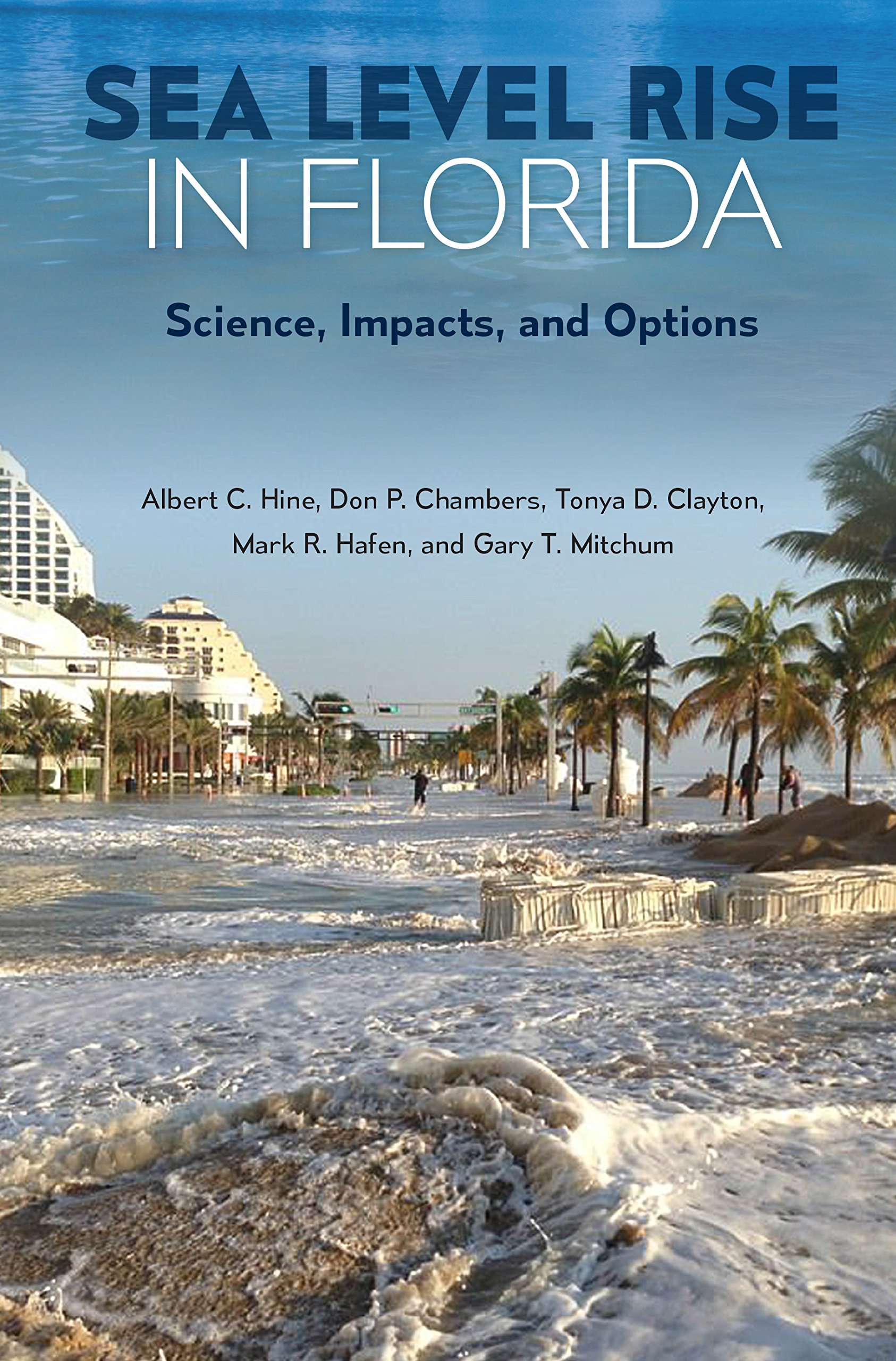 amazon sea level rise in florida science impacts and options