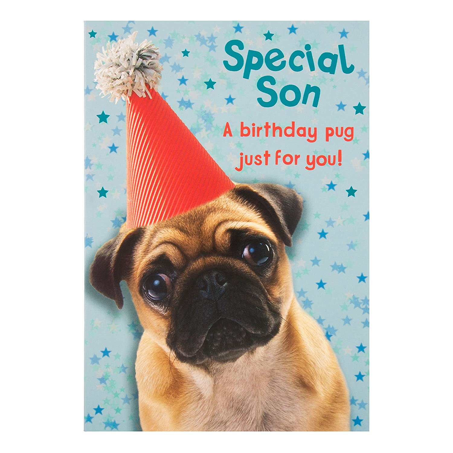 Hallmark Son Birthday Card Pug