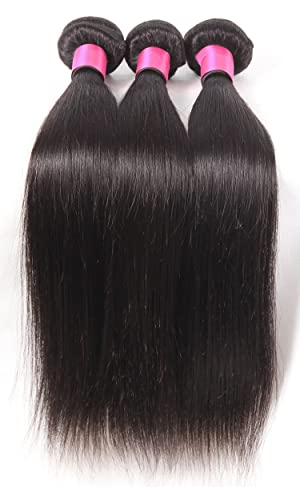 DFX Hair (TM) 8~30 inches Brazilian Virgin Human Hair Extension Silky Straight, Pack of Three, 100g/Bundle, 6A Natural Color Weft (22 22 22)
