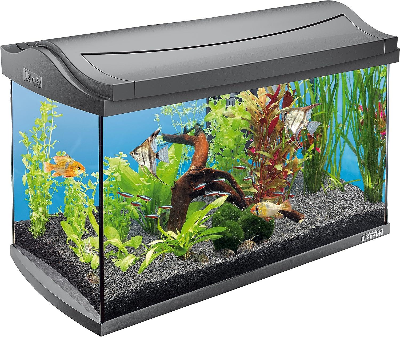 tetra-aquaart-aquário-led- 60-litros-de-capacidade