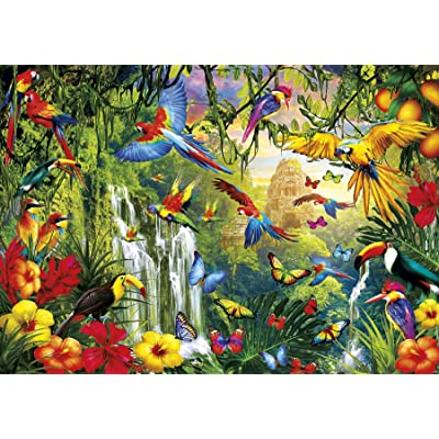 Buffalo Games - Vivid Collection - Wings - 300 Large Piece Jigsaw Puzzle: Toys & Games