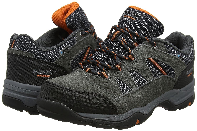 Hi-Tec Varsity Low Waterproof Chaussures de Randonn/ée Basses Homme