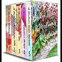 Becky Tibbs: A Medium's Mystery Series, Books 1-5: A Cozy Ghost Mystery series (Becky Tibbs: A North Carolina Medium's Mystery Series Book 0) (English Edition)