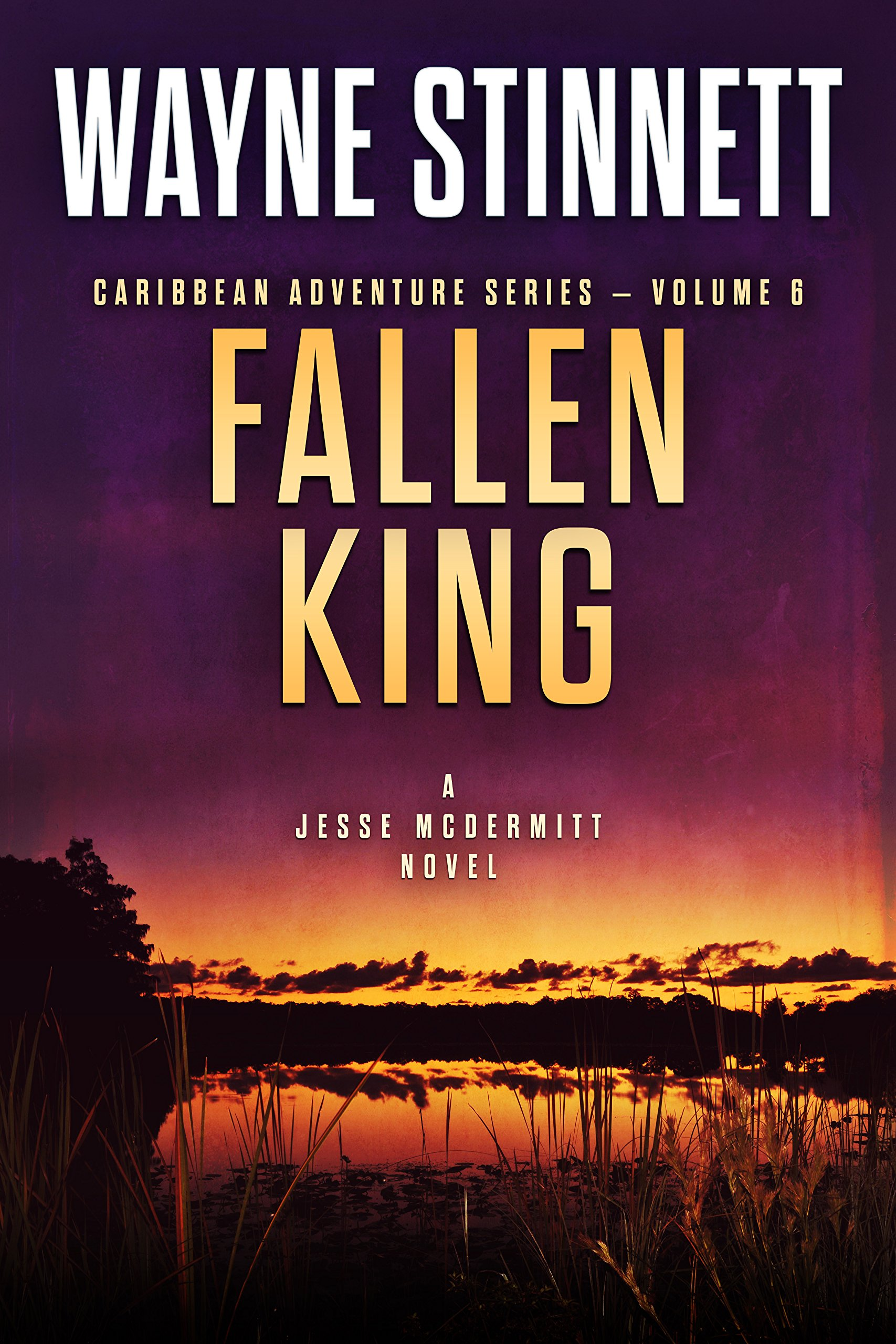 Fallen King: A Jesse McDermitt Novel (Caribbean Adventure Series Book 6) por Wayne Stinnett