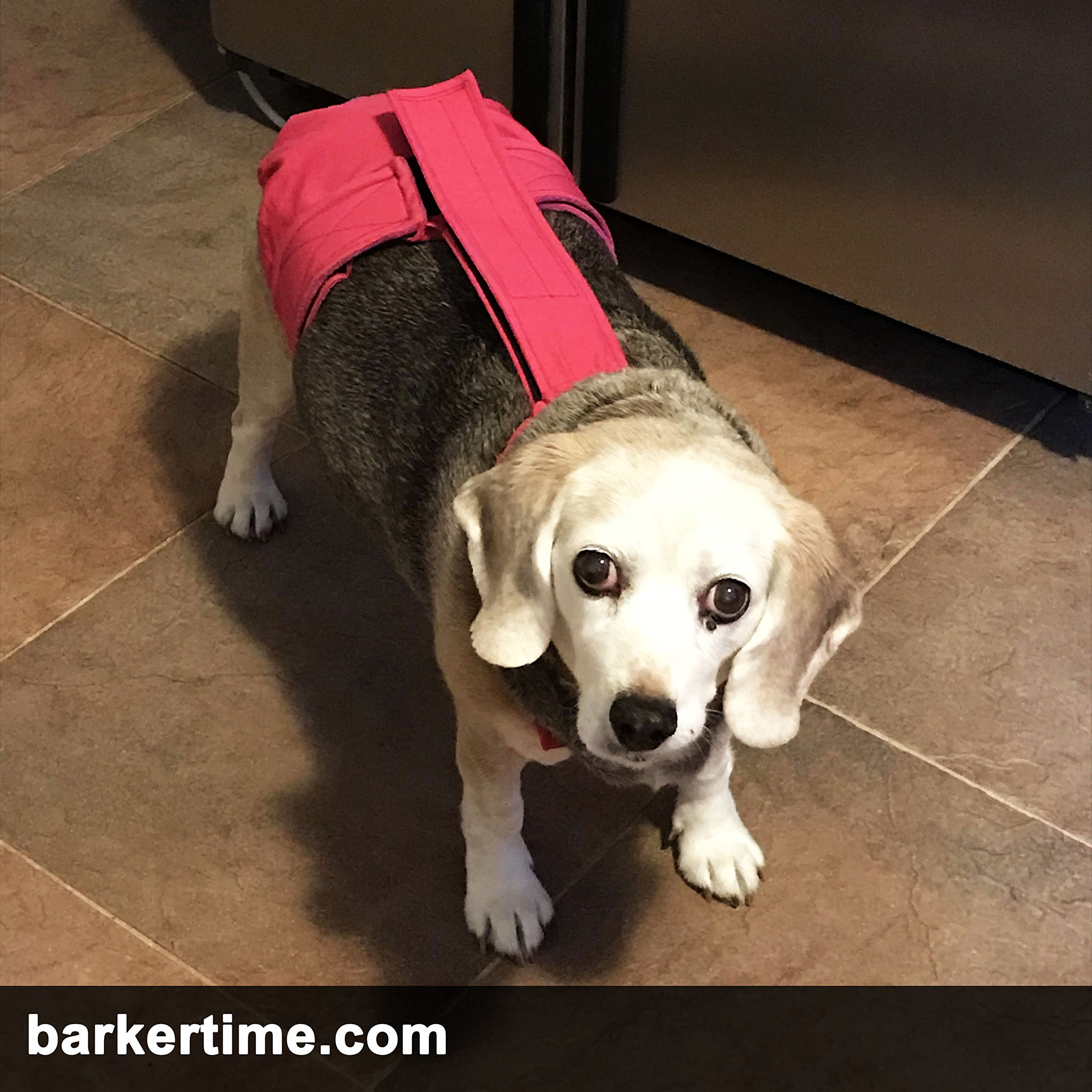 Barkertime Dog Diaper Overall - Made in USA - Hot Pink Escape-Proof Washable Dog Diaper Overall, XXL, With Tail Hole for Dog Incontinence, Marking, Housetraining and Females in Heat