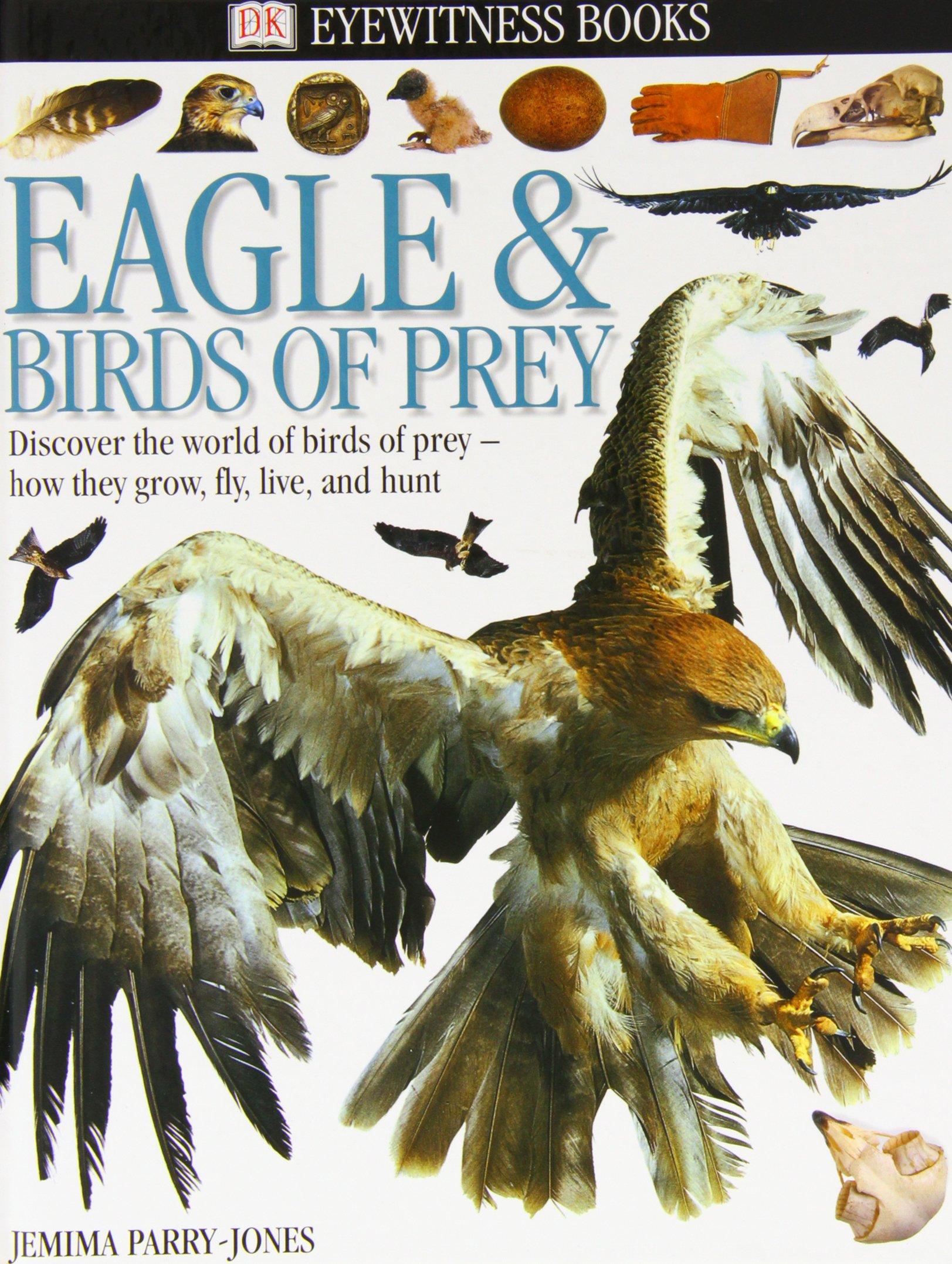 Eagles and Birds of Prey (DK Eyewitness Books): Amazon.co.uk: Jemima Parry- Jones MBE: Books