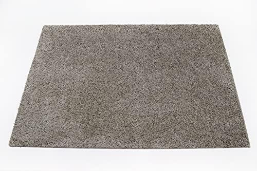 Soft Flecked Frieze Beige Bound Carpet Area Rug – 4 x6