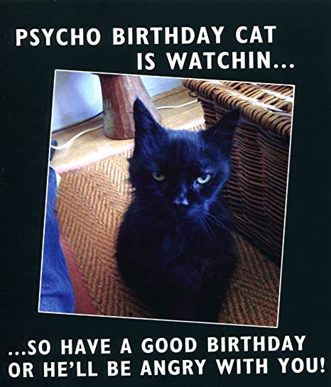Funny birthday card psycho birthday cat is watchin so have a funny birthday card psycho birthday cat is watchin so have a good birthday bookmarktalkfo Images