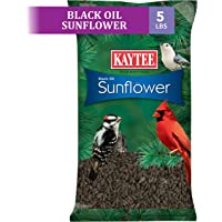 Kaytee Wild Bird Black Sunflower