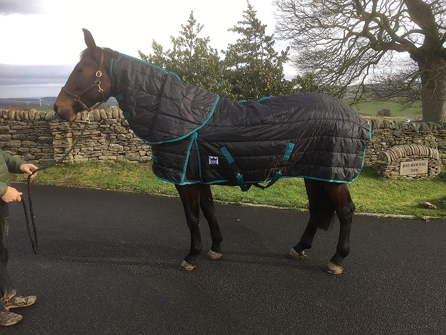 BAX Equine Heavy Weight Stable Rug Detachable Neck Horse 300g Winter SIZE 6ft 6 UK SELLER