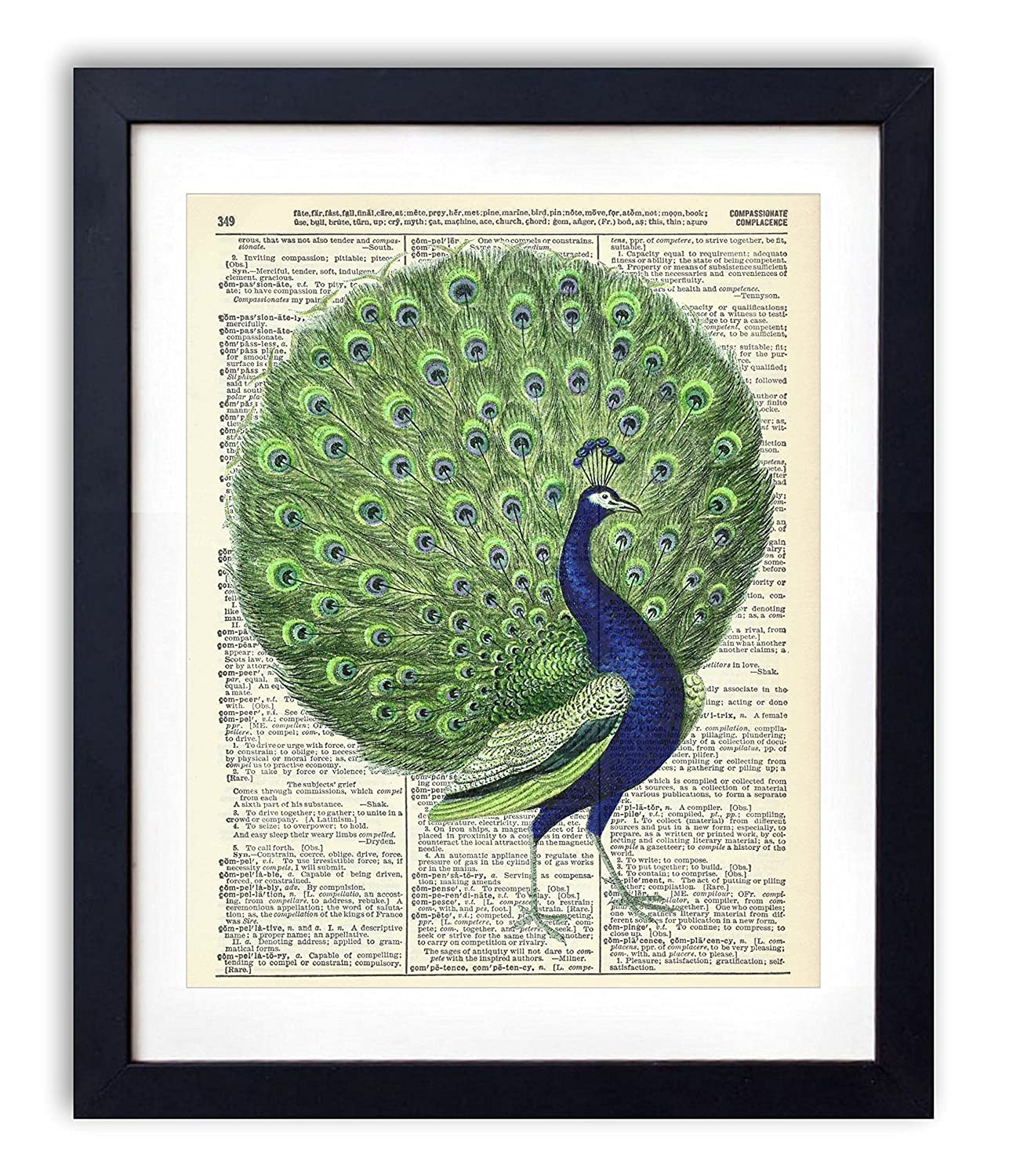 Peacock Color Illustration Upcycled Wall Art Vintage Dictionary Art Print 8x10 inches / 20.32 x 25.4 cm Unframed