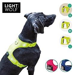 riijk Gilet pour Chien à LED pour Plus de sécurité, Gilet d'avertissement en Vert Jaune, Gilet de Harnais réglable, 5 lumières Vives, Collier Lumineux