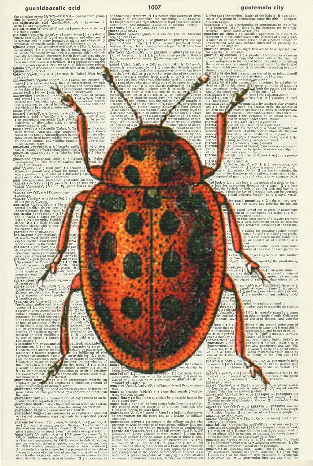 Mixed Media Original 503DF VINTAGE RED AND BLACK BEETLE Upcycled Page Wall Art Wall Hanging INSECT Vintage Dictionary Art Print Home D/écor Art Print
