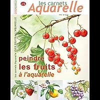 Les carnets aquarelle n°6: peindre les fruits à l'aquarelle (French Edition)