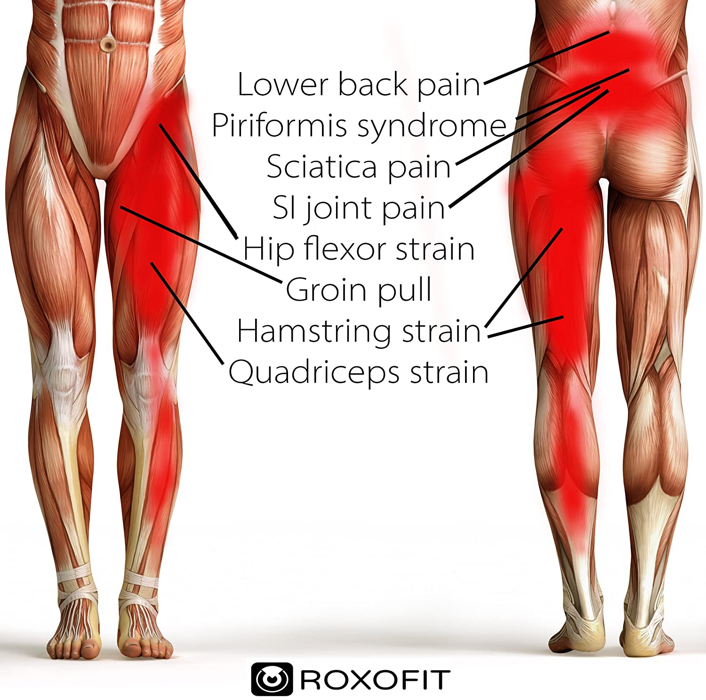 Amazon.com : Hip Brace - Groin Support for Sciatica Pain Relief ...