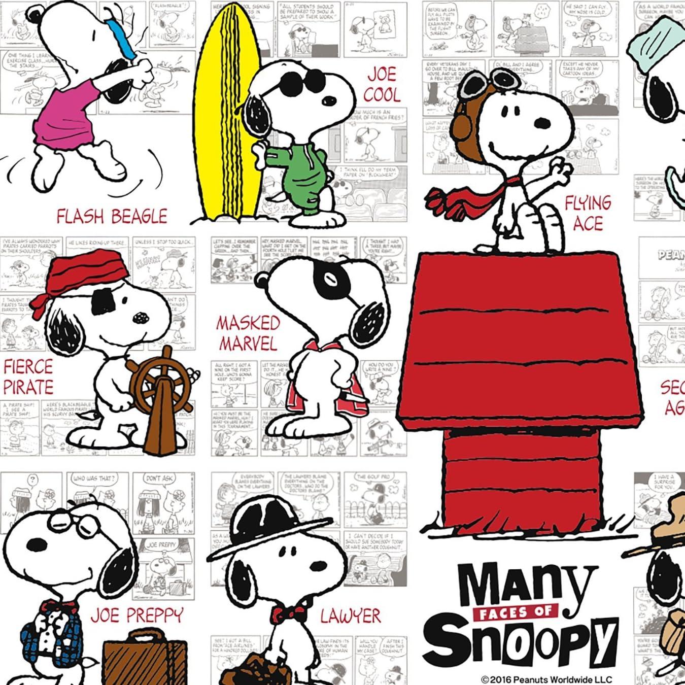 スヌーピー Peanuts メニー フェイスズ オブ スヌーピー Ipad壁紙 画像
