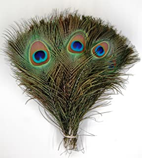 Amazon.com: Pack of 30pc Natural Peacock Feathers 10-12'': Arts ...