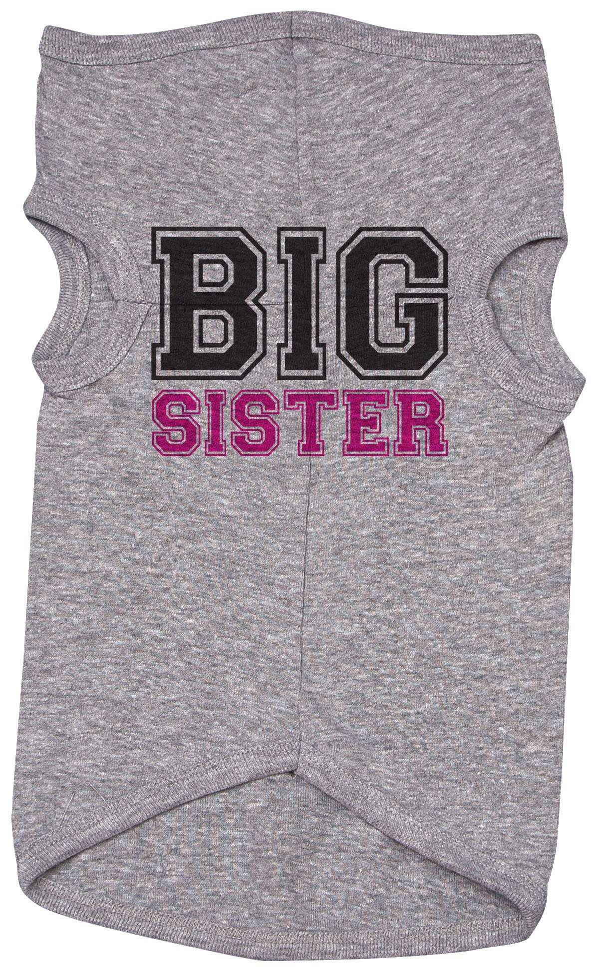 Baffle Sister Shirt For Dogs/BIG SISTER (COLLEGE FONT)/Grey Puppy Tee/Siblings (2XL)