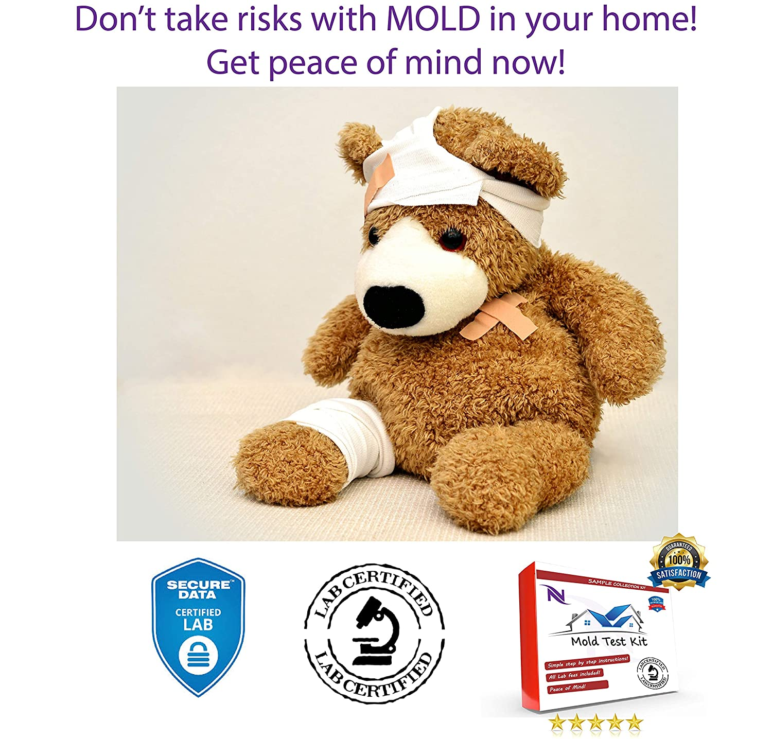#1 Lab Certified Mold Test! 1 Tests Lab Analysis of Mold Samples Certified Mold Lab Test Lab Analysis and Expert Consultation Included