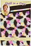 Eleanor Burns Pattern, Pineapple Quilt by Quilt in a Day
