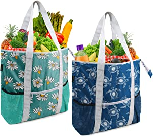 BeeGreen Sturdy Food Delivery Bags 2 Pack Heavy Duty Insulated Grocery Shopping Cooler Totes for Cold and Hot Food Transport with Zipper Long Handles Green Navy Blue