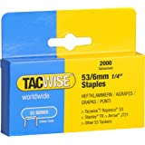 Tacwise Heavy Duty 53 Series 6mm Staples for Staple Gun (2000)