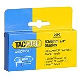 Tacwise Heavy Duty 53 Series 6mm Staples for Staple Gun (2000)