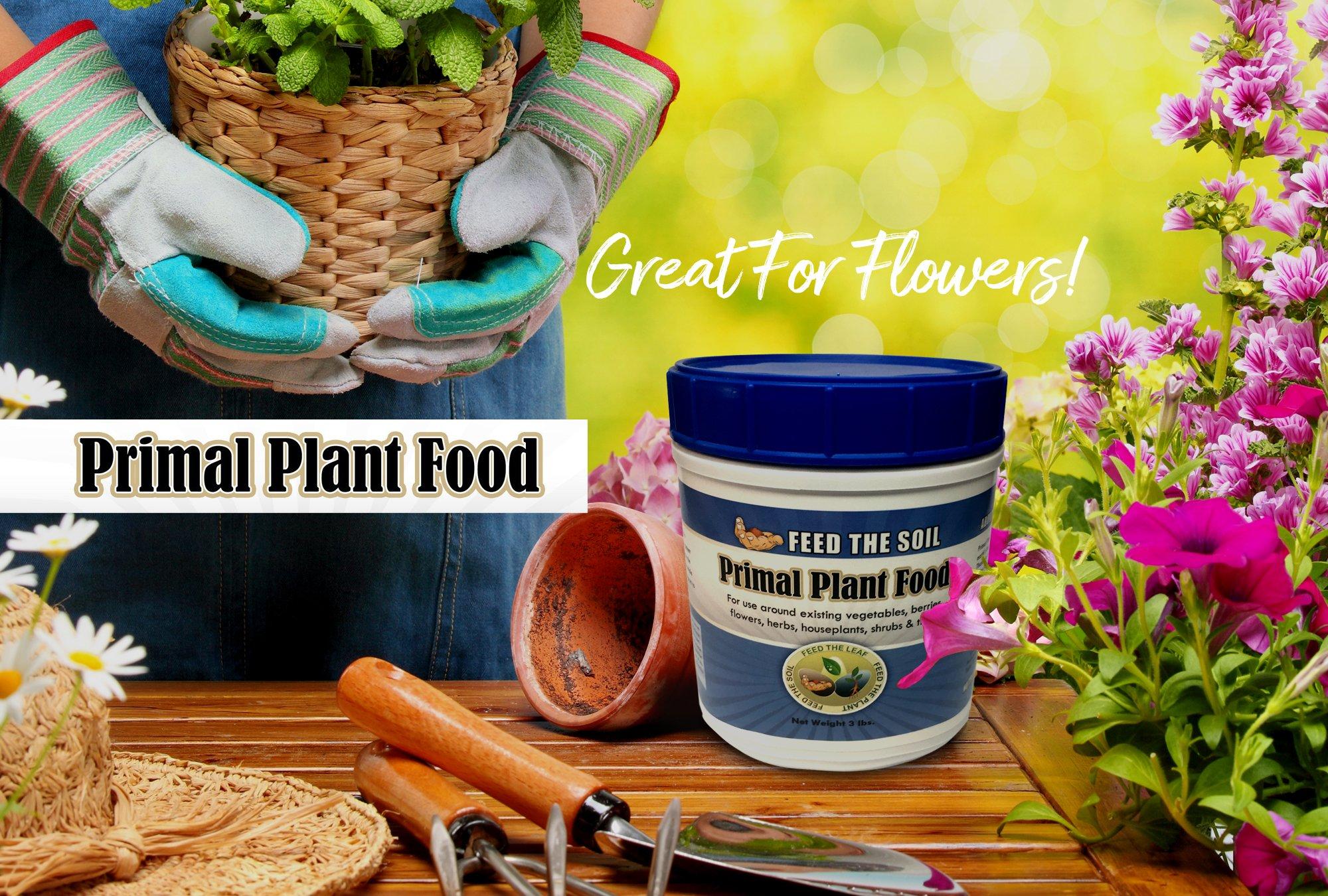Premium Organic Fertilizer - Primal Plant Food - Best Indoor