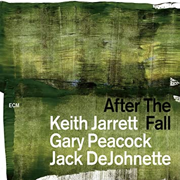 Amazon | AFTER THE FALL | JARR...