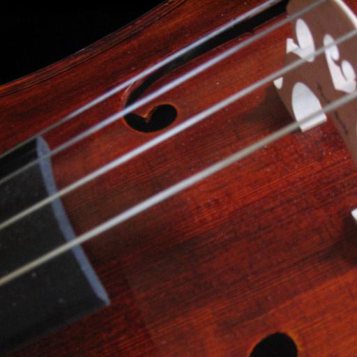 Cello Solo Instrument - Cello Lessons For Beginners