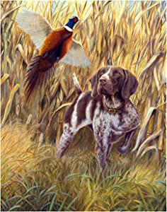 German Shorthaired Pointer Art Reproduction Print (Steady to Wing by Michael Steddum) Limited Edition Signed and Numbered German Shorthaired Pointer Artwork