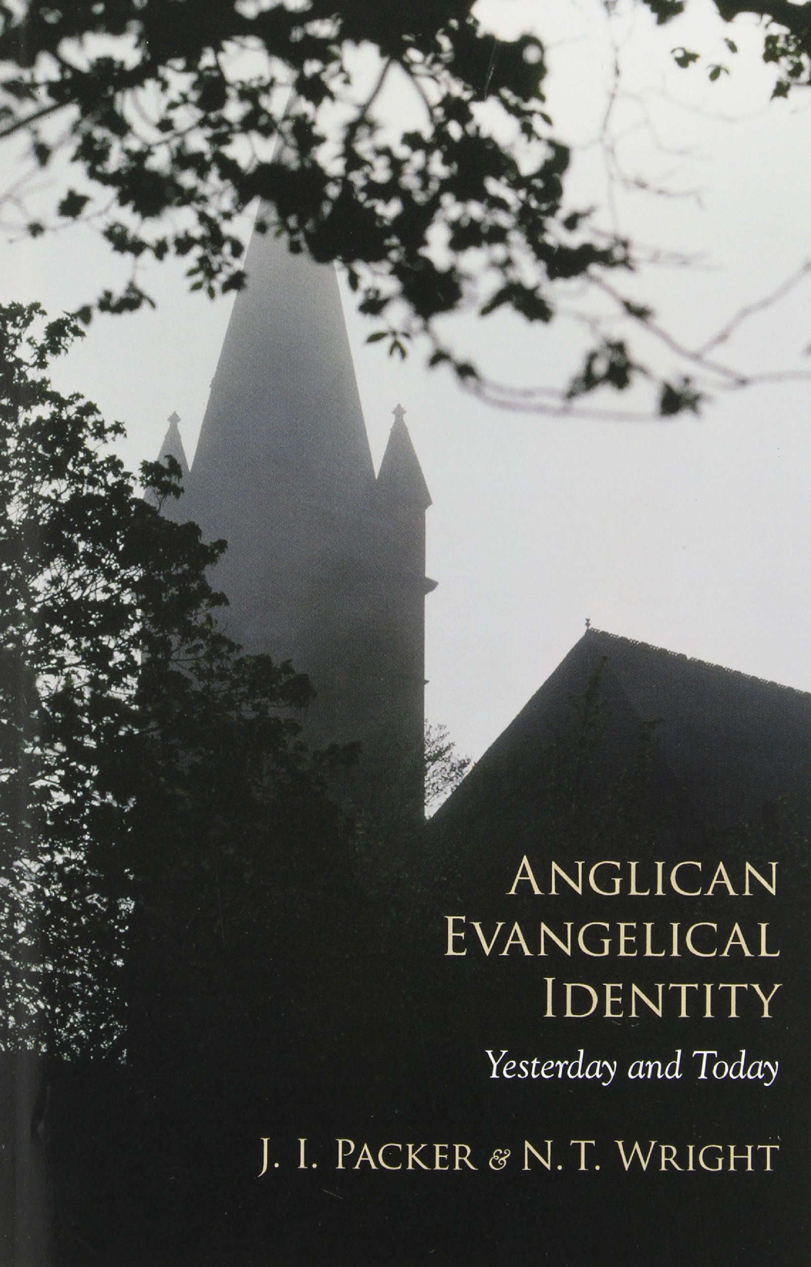 Read Online Anglican Evangelical Identity: Yesterday and Today pdf epub