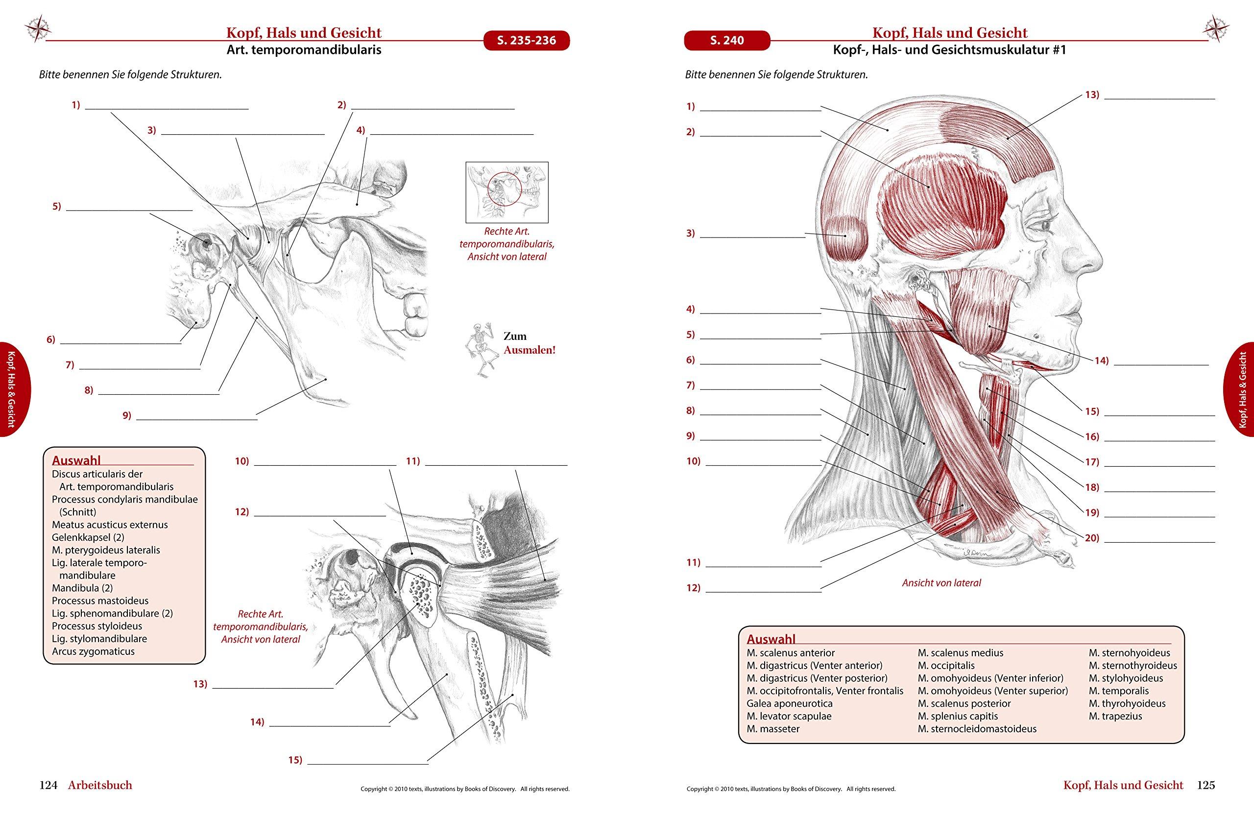 Trail Guide Arbeitsbuch - Eine praxisorientierte Lernhilfe für die ...