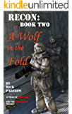 Recon:  A Wolf in the Fold
