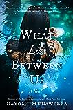 What Lies Between Us: A Novel