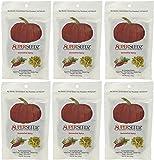 Superseedz Somewhat Spicy Pumpkin Seeds - 5 oz, Package of 6