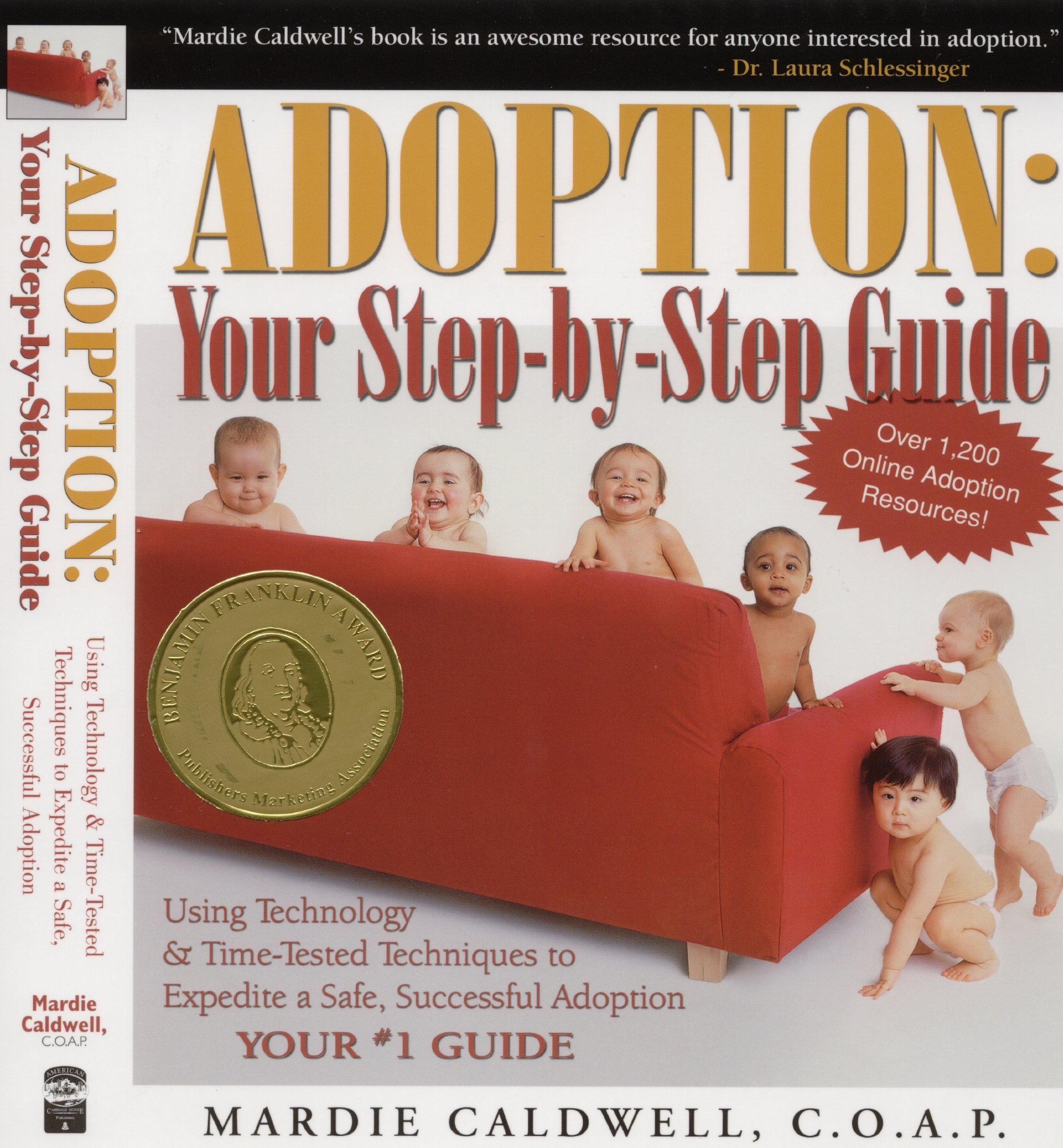 Adoption: Your Step-by-Step Guide ebook