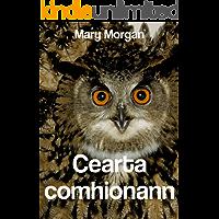Cearta comhionann (Irish Edition)