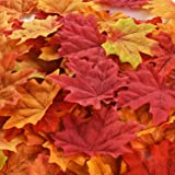 Hotop 300 Pieces Maple Leaves Artificial Autumn Fall Leaves Multicolor Mixed Garlands Art Scrapbooking Wedding House Decorations