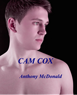 Gay-Cam-Seiten