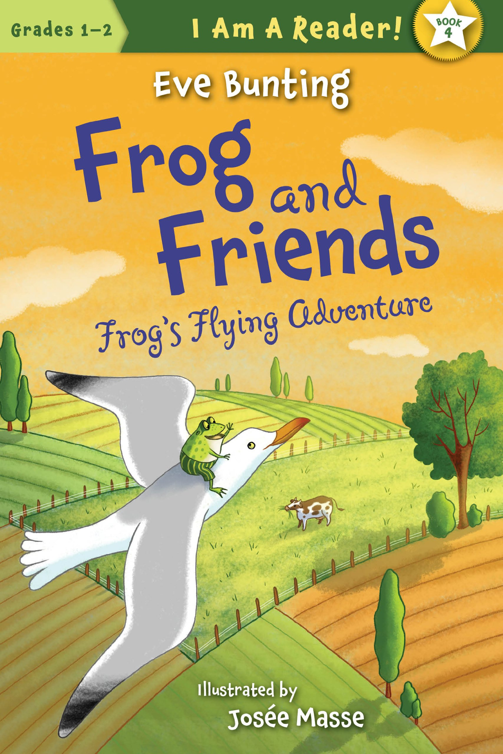 Frogs Flying Adventure Am Reader product image
