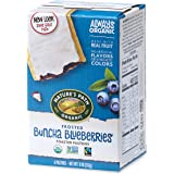 Nature's Path Frosted Buncha Blueberries Toaster Pastries, Healthy, Organic, 11-Ounce Box (Pack of 12)